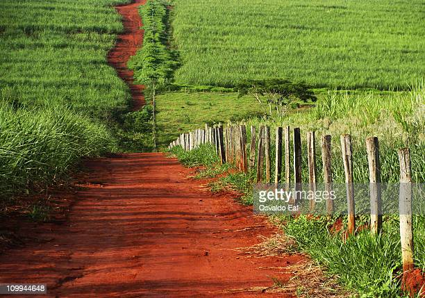 the journey begins - goiania stock pictures, royalty-free photos & images