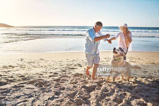 the joy of romping on a sandy beach! - candid beach stock photos and pictures