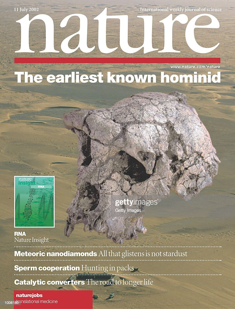 Earliest Skull Discovered : News Photo