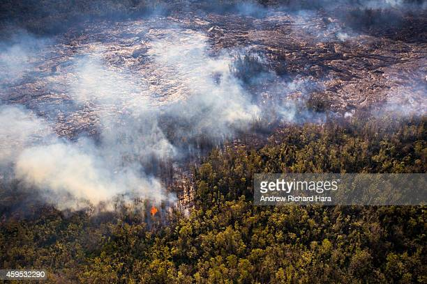 The June 27th lava flow from the Kilauea volcano holds at a stand November 17 2014 in Pahoa Hawaii According to reports the lava flow has stalled on...