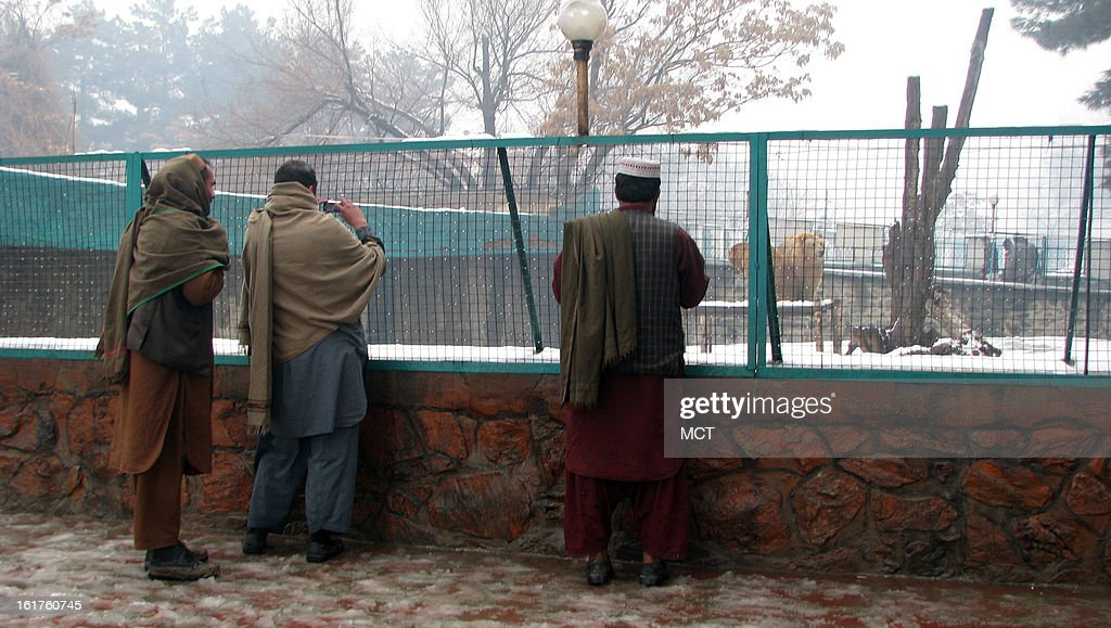 The Kabul Zoo is so popular that are visitors even when it when its snowing and the sidewalks are ankle deep in slush. These men are admiring the Asiatic black bears.
