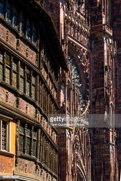 The Kammerzell House and the cathedral Notre Dame, Strasbourg, Bas Rhin,Alsace, France