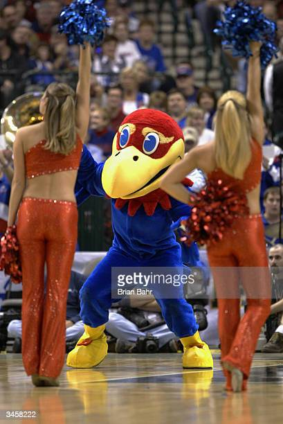 The Kansas Jayhawks mascot and cheerleaders perform in the semifinals of the Phillips 66 Big 12 Tournament game against the Texas Longhorns on March...
