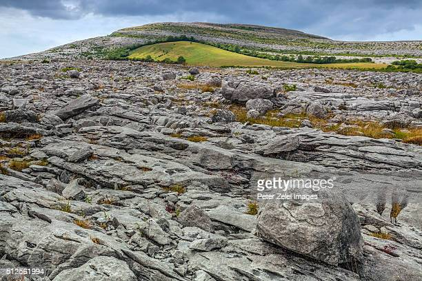 the karst rock formations at the burren, county clare, ireland - piedra caliza fotografías e imágenes de stock