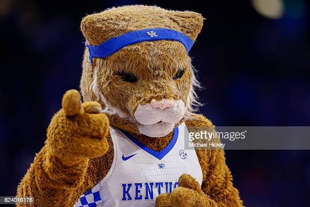 The Kentucky Wildcats mascot is seen during the game against the Canisius Golden Griffins at Rupp Arena on November 13 2016 in Lexington Kentucky...