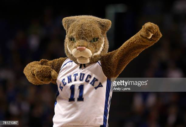 The Kentucky Wildcats mascot performs during the game against the Stony Brook Seawolves on November 27 2007 at Rupp Arena in Lexington Kentucky
