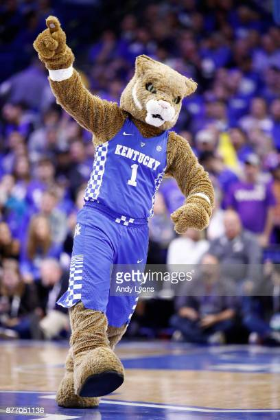The Kentucky Wildcats mascot performs during the game against the Troy Torjans at Rupp Arena on November 20 2017 in Lexington Kentucky