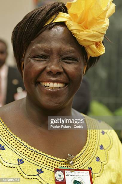 The Kenyan Nobel Piece Prize winner Wangari Maathai during the 5th summit of the African Union | Location Syrte Libyan Arab Jamahiriya