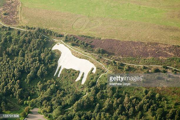 The Kilburn White Horse man made from lime viewed from a glider mid air over the Yorkshire Gliding Club which lies on a plateau in the North...