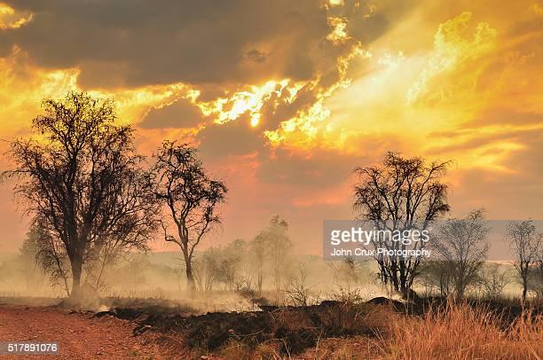 The Kimberley bush fires
