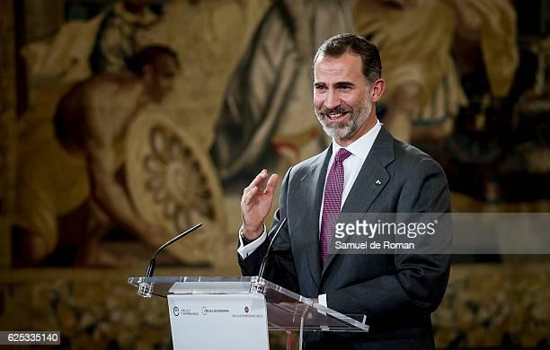 The King of Spain Felipe VI speaks as he hands over the businessmen of the year prize on November 23 2016 in Burgos Spain