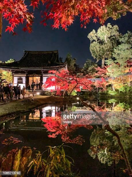 the kodai-ji zen temple at night, kyoto, janpan. - vsojoy stock pictures, royalty-free photos & images