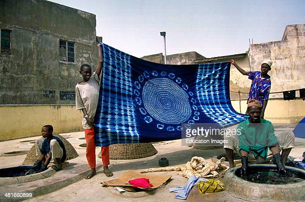 The Kofar Mata Dye Pits in Kano northern Nigeria These indigovegetable dye pits are one of the most fascinating aspects of this old city Craftsmen...