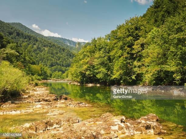 o rio kupa - rio kupa - fotografias e filmes do acervo