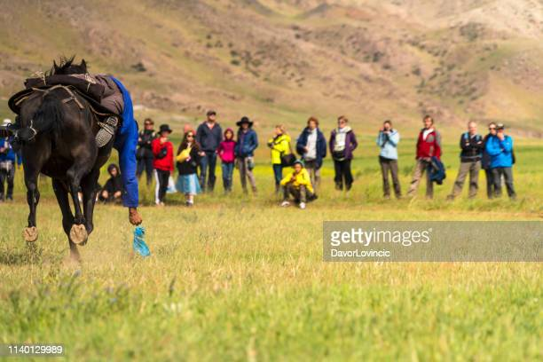 the kyrgyz horse rider picking up the bait from ground during on birds or prey festival, kyrgyzstan - match point scoring stock pictures, royalty-free photos & images