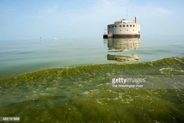 The Lady K tow boat kicks up a wake full of green algae a few hundred feet from the city of Toledo's Water Intake on Lake Erie for testing on Monday...