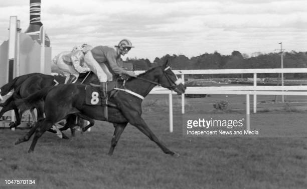 The Laidlaw Perpetual Challange Cup race at Leopardstown Racecourse circa October 1988