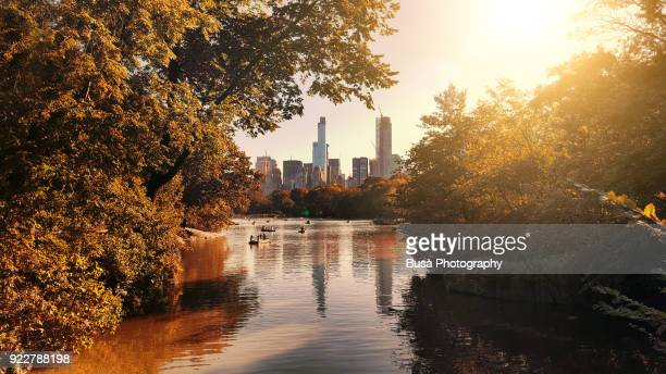 the lake at central park, with view of the skyscrapers of central park south in the background. new york city, usa - avondschemering stockfoto's en -beelden