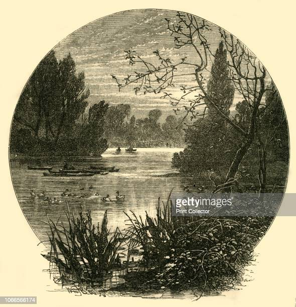 The Lake Battersea Park' The park on the south bank of the River Thames in London was built on marshland reclaimed from the river and opened in 1858...