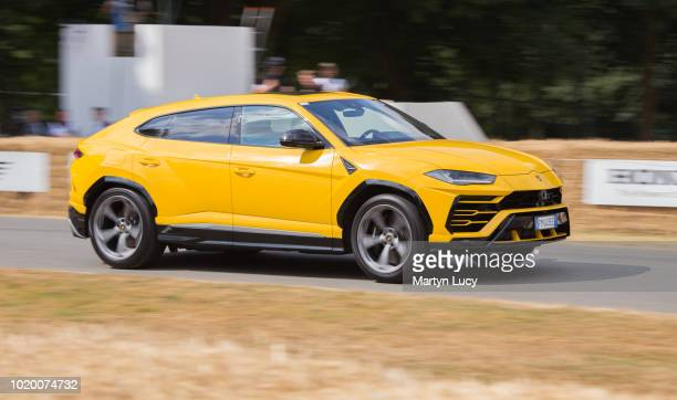 The Lamborghini Urus making its way down the hill at Goodwood Festival of Speed 2018 The name comes from the Urus the ancestor of modern domestic...