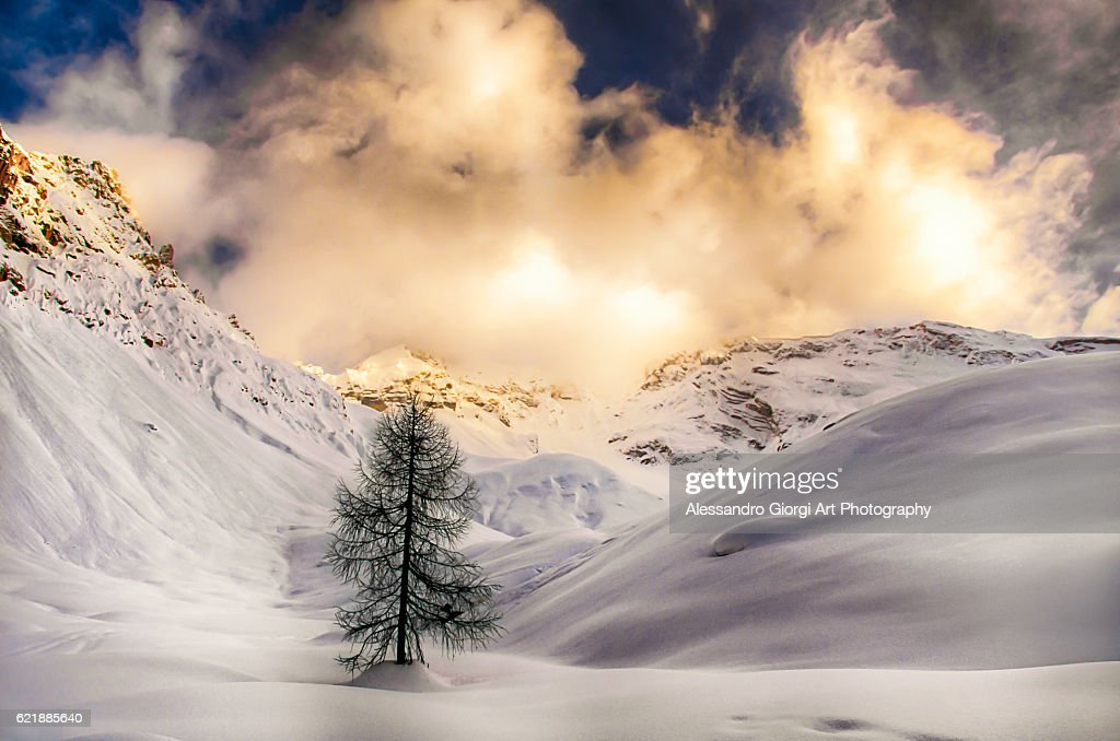 The land of fairytales : Foto stock