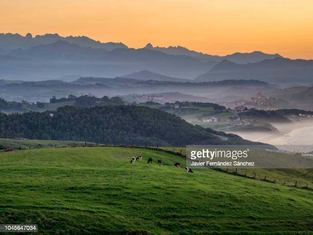 the landscape of cantabria, meadows, sea, and mountain, encompassed in a sunset in san vicente de la barquera. with the fishing and tourist village, framed by a succession of mountains ending in the picos de europa. - カンタブリア ストックフォトと画像