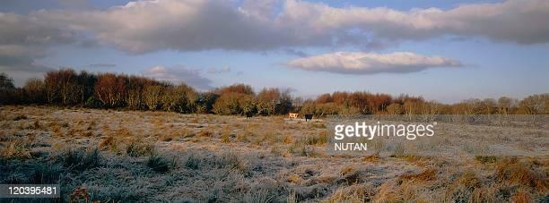 The landscape of Sligo region in Ben Bulben Ireland