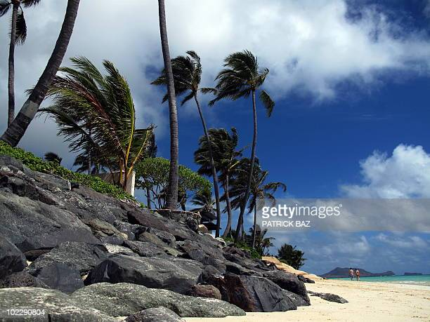 The Lanikai beach in Oahu Honolulu Hawaii is pictured on June 13 2010 AFP PHOTO / PATRICK BAZ