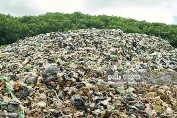 The largest landfill in from the city, Pollution