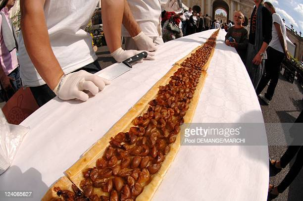 The largest tart cherry plum in the world 325 meters long and 45 centimeters In Nancy France On September 01 2007 The largest tart cherry plum in the...