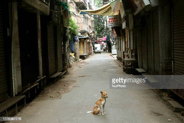 The largest wholesale markets in Asia Burrabazar Market wears a deserted view during complete lockdown to prevent the spread of COVID-19 in Kolkata,...