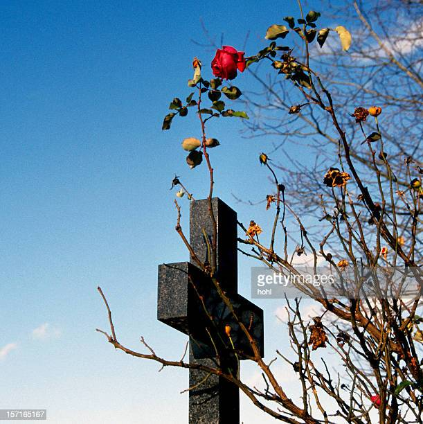 the last rose - crosses with flowers stock pictures, royalty-free photos & images