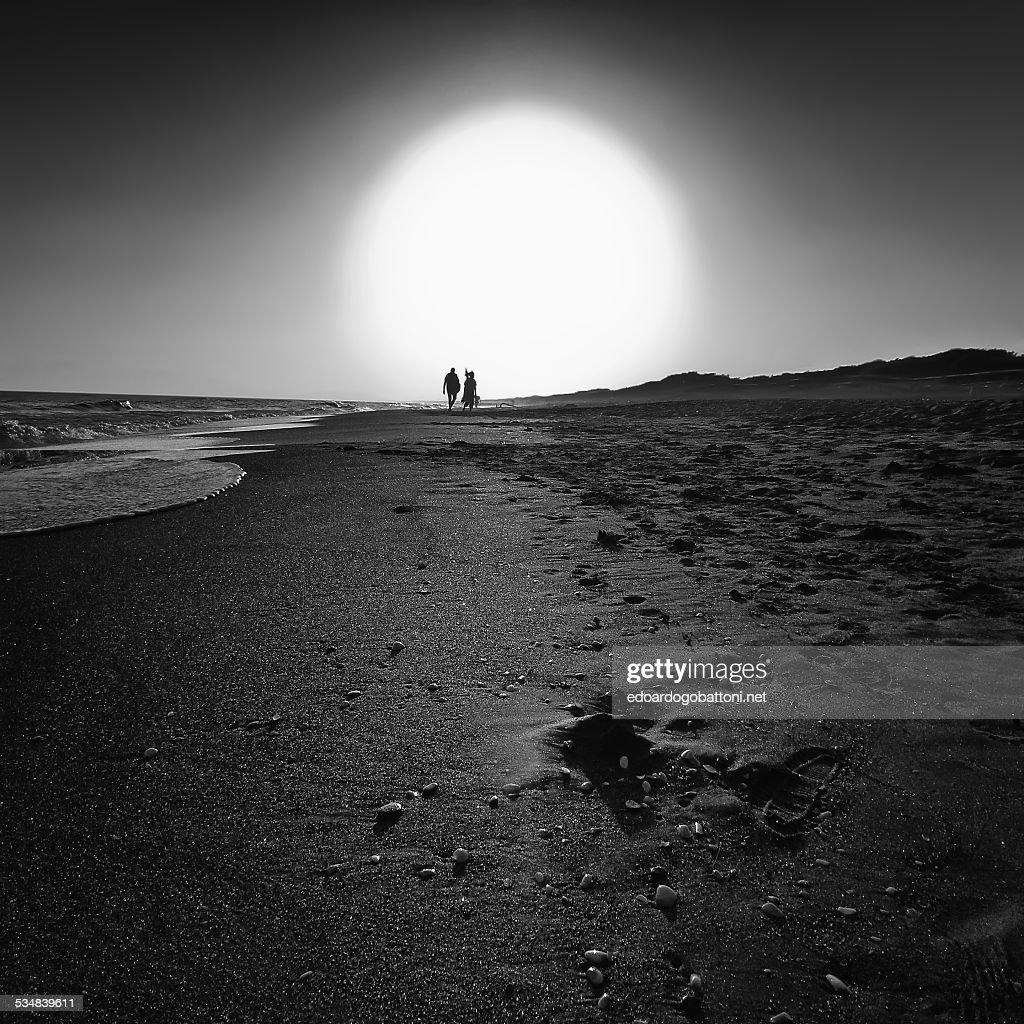 The last sun : Foto stock