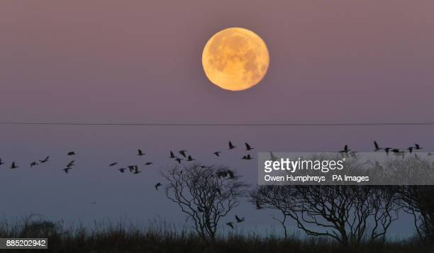 The last Supermoon of 2017 sets over Whitley Bay Northumberland