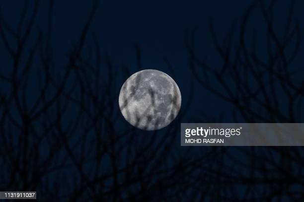 The last Supermoon of 2019 known as the 'super worm equinox moon' is seen past tree branches over Karak in Malaysia's Pahang state on March 22 2019...