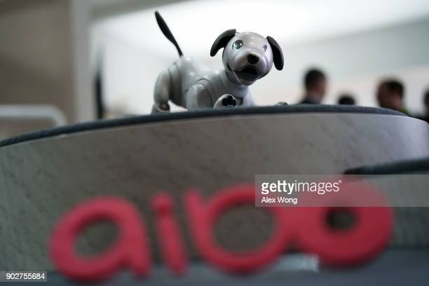 The latest generation of the Sony robotic pet Aibo is on display during a press event for CES 2018 at the Las Vegas Convention Center on January 8...