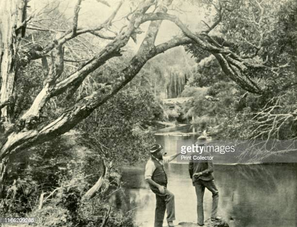 The Launching Place, Upper Yarra, Victoria', 1901. Launching Place, a town in Victoria on the Upper Yarra river named as the spot where cut logs were...