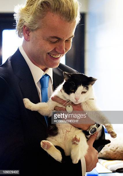 The leader of the Dutch political party PVV Geert Wilders pets a cat on February 21 2011 in Enschede during on campaign tour ahead of the local...