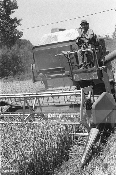 The Leberes father and son take in the harvest with the Courdemanche Coop combine harvester