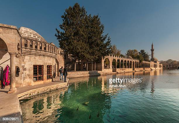 The legendary Pool of Sacred Fish where Abraham was thrown into the fire by Nimrod. The pool is in the courtyard of the mosque of Halil ur Rahman,...