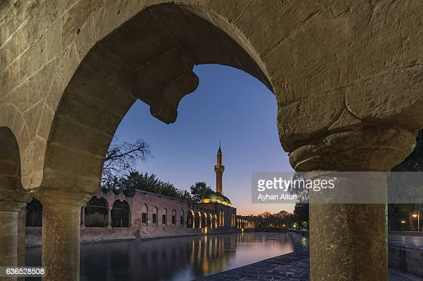 The legendary Pool of Sacred Fish with Rizvaniye Mosque at blue hour,Sanliurfa,Turkey