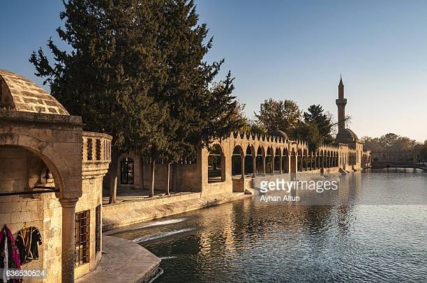 The legendary Pool of Sacred Fish with Rizvaniye Mosque in the morning,Sanliurfa,Turkey