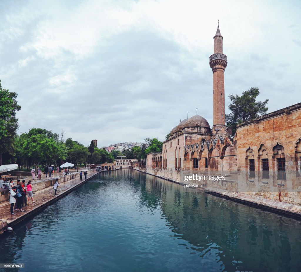 The legendary Pool of Sacred Fish with Rizvaniye Mosque, Sanliurfa, Turkey : Stock Photo