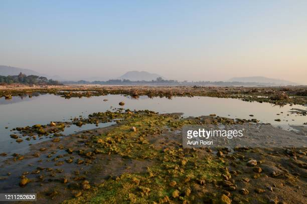 the level of water in the mekong river in this northeastern border province is dropping rapidly, exhibiting the most unnatural phenomenon in 50 years. pakchom, leoi. - light natural phenomenon stock pictures, royalty-free photos & images