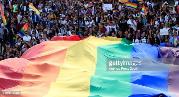 The Lgbti community celebrates the commemoration of 50 years of Gay Pride worldwide as part of the pride day celebration on June 29, 2019 in Quito,...