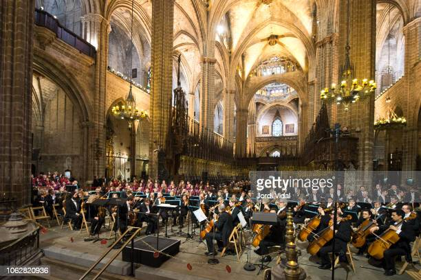 The Liceu orchestra prepares for the tribute for the Spanish opera singer Montserrat Caballe at Barcelona Cathedral on November 17 2018 in Barcelona...