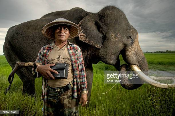 The life of mans and elephants