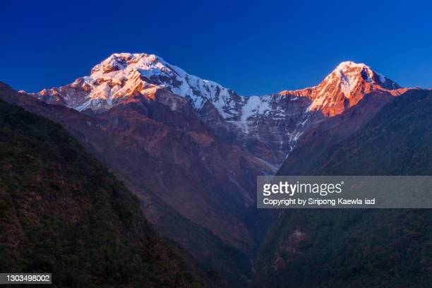 the light of sunset is painting over the peak of mt.annapurna south and hinchuli at chhomrong village, nepal. - annapurna south stock pictures, royalty-free photos & images