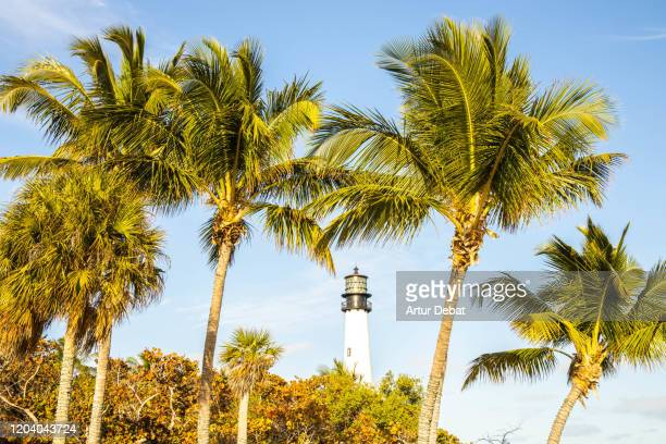 the lighthouse of the bill baggs cape florida state park in miami. - florida us state stock pictures, royalty-free photos & images