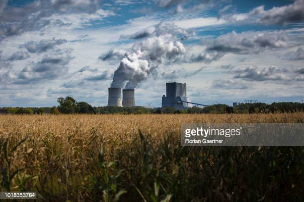 The lignitefired power station is pictured on August 15 2018 in Schwarze Pumpe Germany